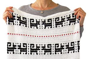 Timi Blanket Pattern